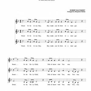Sweet Little Jesus Boy sheet music score